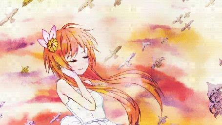 Анимация Tachibana Marika / Тачибана Марика из аниме Притворная любовь / Nisekoi