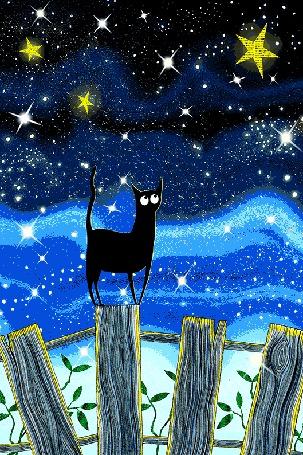 Анимация Черный кот стоит на заборе на фоне ночного звездного неба, by scratchproductions