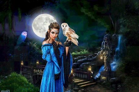 Анимация Девушка-эльф, стоя на фоне луны, держит на руке сову, by abcd21