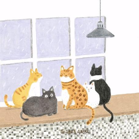 Анимация Пять кошек сидят на подоконнике и смотрят на дождь за окном, by gogorongstudio