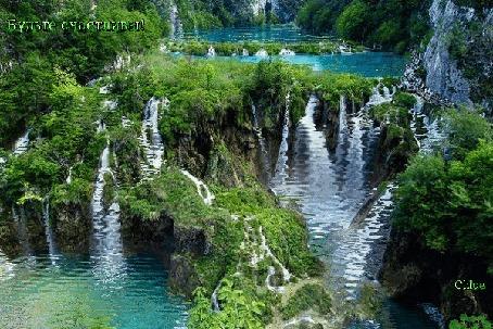 Анимация Очень живописный уголок природы с бирюзовыми водопадами, ручейками и сочной зеленью, by choe (Будьте счастливы!)
