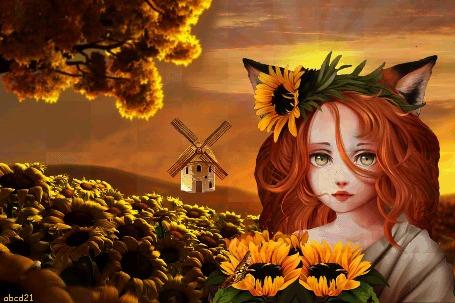 Анимация Девочка-лисичка с подсолнухами на фоне мельницы, by abcd21