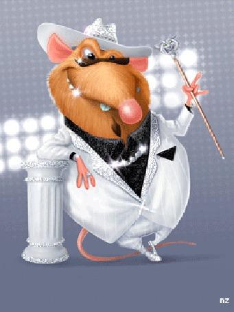 Анимация Толстый крыс в белом костюме с тростью, by NZ