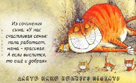 Анимация Спящая кошка с котятами (Из сочинения сына: У нас счастливая семья. Папа работает. Мама — красивая. А если выспится, то еще и добрая, Дайте маме немного поспать), by a-zarina