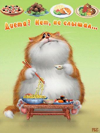 Анимация Толстый кот кушает рамен и суши, пьет чаек (Диета? Нет, не слышал.), by NZ