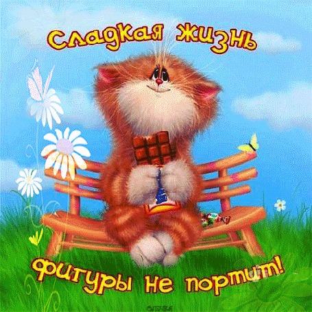 Анимация Счастливый котик на скамейке ест сладости (Сладкая жизнь фигуры не портит), by Олечка