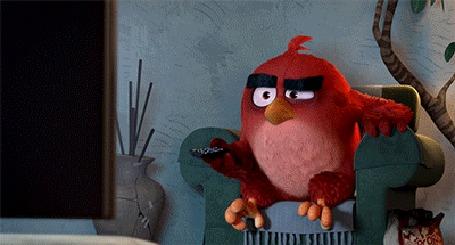 Анимация Рэд / Red кидает пульт в телевизор, момент из мультфильма Angry Birds / Злые птицы
