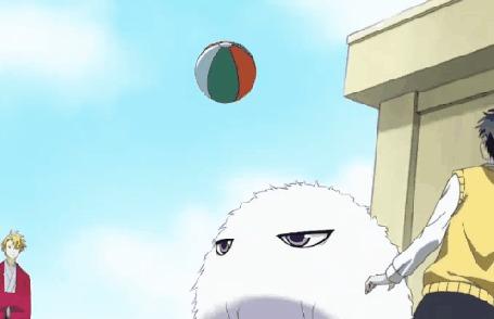 Анимация Пушистик играет с мячиком, кадр из аниме Обитель мрачного мононокэ / Fukigen na Mononokean