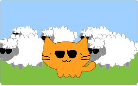 Анимация Рыжий кот и овечки на поляне в солнцезащитных очках, by MrrrCat