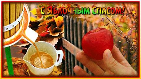 Анимация На фоне осеннего сада мужская рука держит яблоко, рядом льется сок. (С Яблочным Спасом!)