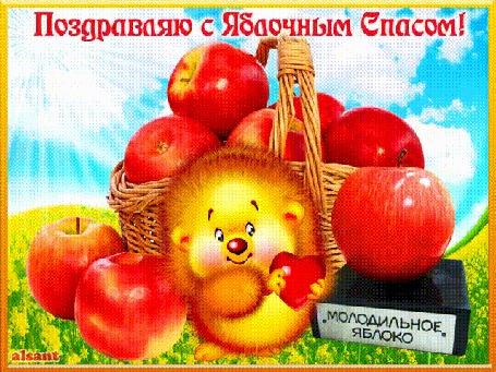 Анимация Ёжик держит сердечко на фоне яблок, с яблочным спасом, by alsant