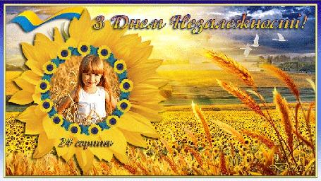 Анимация Среди полей, в подсолнухе девочка поздравляет с днем независимости Украины (З Днем Незалежності!)