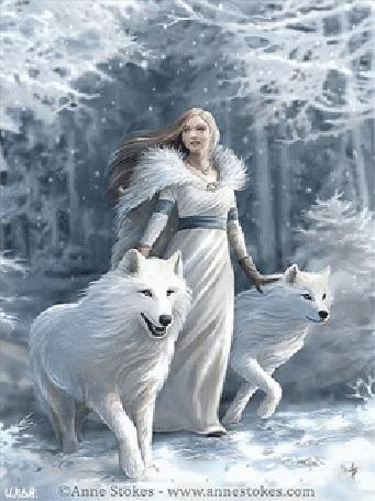 Анимация Девушка одетая в белую одежду и два белых волка идут через зимний лес под падающим снегом. Картинка автора Anne Stokes