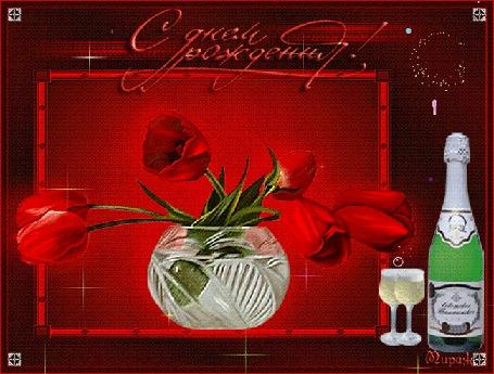 Анимация Тюльпаны на красном фоне, рядом стоит бутылка шампанского (С Днем Рождения!)