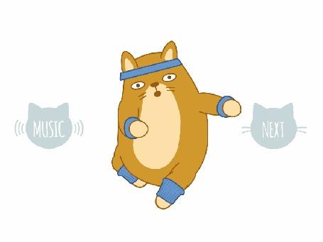 Анимация Кот Теодор занимается под музыку