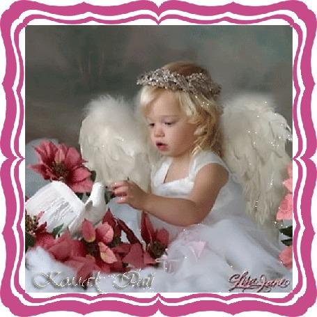 Анимация Девочка в костюме ангела кормит голубя