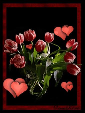 Анимация Тюльпаны на фоне сердечек, by Ольга киска