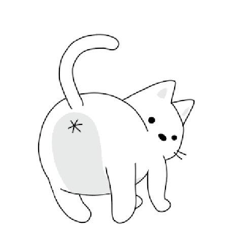Анимация Кот машет хвостом