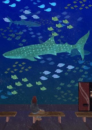 Анимация Девушка сидит перед стеклом океанариума и смотрит на проплывающих крупных и мелких рыб, by Lara Paulussen