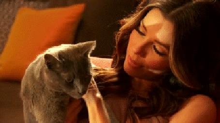 Анимация Голливудская актриса Eva Longoria / Ева Лонгория гладит кота