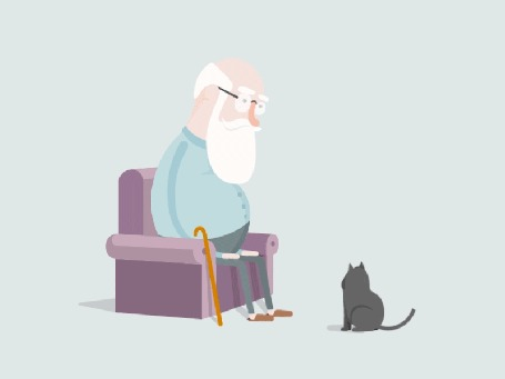 Анимация Пожилой мужчина, сидя в кресле, зовет кошку на колени, похлопывая ладошками, by Muzli