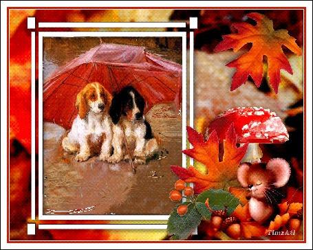 Анимация Два щеночка спаниеля сидят под зонтом в осенней рамочке