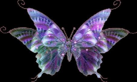 Анимация Мерцающая фиолетово-зеленая бабочка