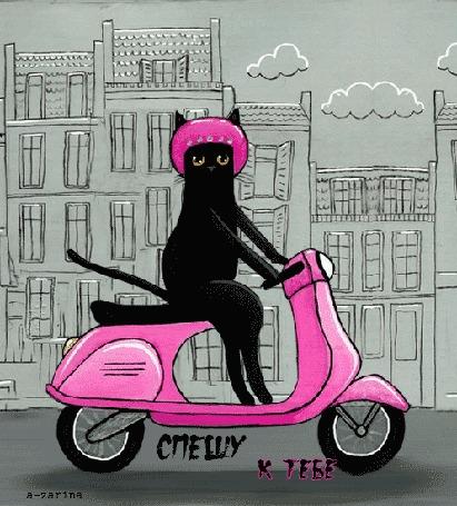 Анимация Черный кот едет по дороге на розовом мотороллере мимо мелькающих домов (Спешу к тебе), by a-zarina