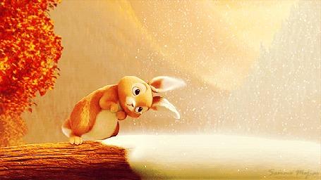 Анимация Зайчишка, сидя на стволе поваленного дерева, смотрит на падающий снег, подставляя под него ушки, кадры из мультфильма Феи: Тайна зимнего леса / Secret of the Wings