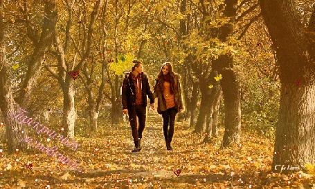 Анимация Влюбленная парочка прогуливается по осеннему лесу под листопадом (Прекрасных мгновений), by Chloe
