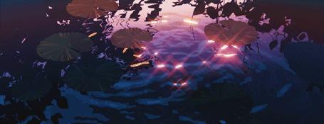 Анимация Искрящиеся блики на поверхности пруда среди листьев кувшинок
