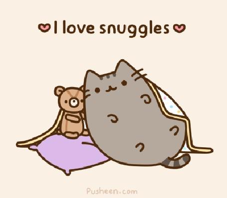 Анимация Кот Pusheen / Пушин прижимается к игрушечному медвежонку (I love snuggles / Я люблю прижиматься)