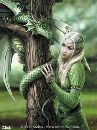 Анимация Эльфийка гладит дракона, обвившегося вокруг дерева. Картинка автора Anne Stokes