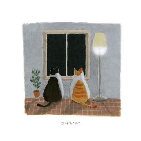 Анимация Кошки смотрят на фейерверк за окном, by gogorongstudio
