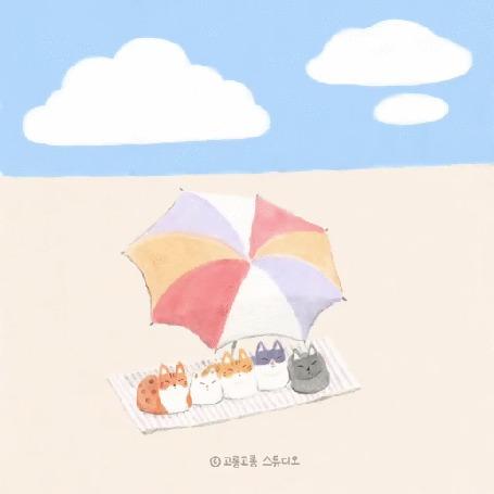 Анимация Кошки лежат на пляже под зонтом, by gogorongstudio
