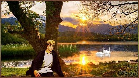 Анимация У пруда, в котором плавают два белых лебедя, возле дерева сидит Сергей Есенин. Ярко светит солнце из-за облаков