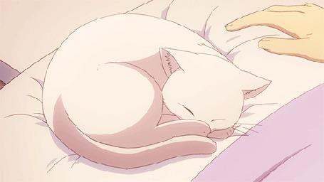 Анимация Рука гладит белую кошку, кадры из аниме в пастельных разовых тонах