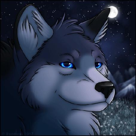 Анимация Моргающий волк на фоне ночного неба, by Bandarai