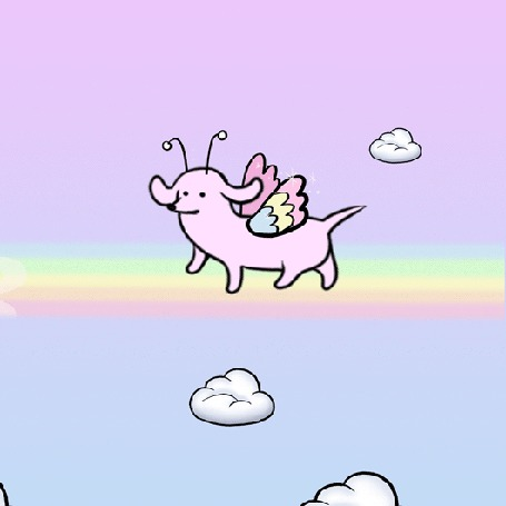 Анимация Розовая такса с разноцветными крыльями весело шагает по радуге