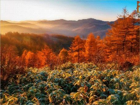 Анимация Горный осенний пейзаж (Осень Золотая)