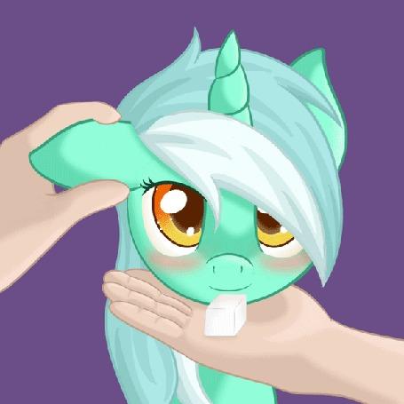 Анимация Рука гладит смущенную Лиру / Lyra из мультфильма Мои маленькие пони: Дружба — это чудо / My Little Pony: Friendship is Magic, лижущую сахарок с ладони другой руки, by RatofDrawn