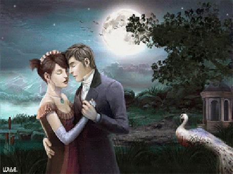 Анимация Молодая пара где-то на природе в горной местности под луной и звездным небом с рядом стоящим в траве павлином, танцует вальс