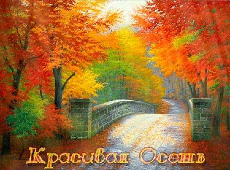 Анимация Солнечные лучи освещают красивый осенний пейзаж (Красивая Осень)