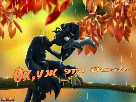 Анимация Ворон сидит на ветке дерева на него падает дождь с осенними листьями (Ох, уж эта осень)