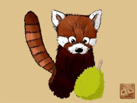 Анимация Красная панда с пушистым фруктом, by superhideki