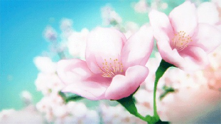 Анимация Летящие весенние лепестки с цветовм