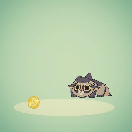 Анимация Цветная кошка охотится за золотой монетой, by Panimated