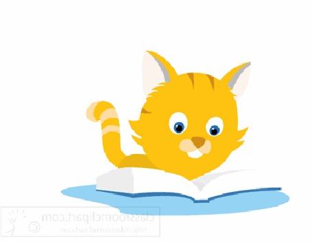Анимация Рыжий котенок читает книжку