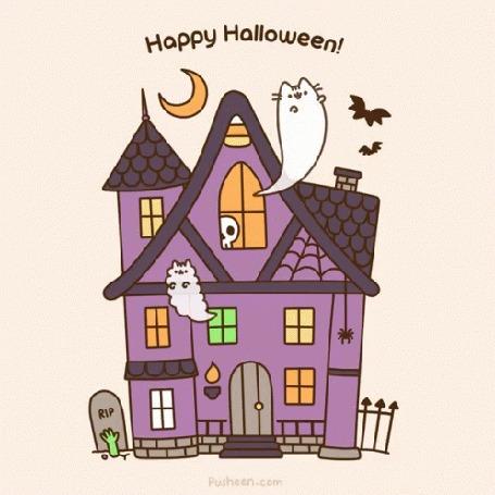 Анимация Жуткий дом с призраками котиков