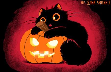 Анимация Черный котенок на тыкве, by amegoddess